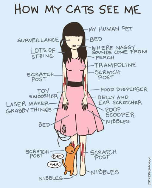 cat vs. human come mi vede il mio gatto