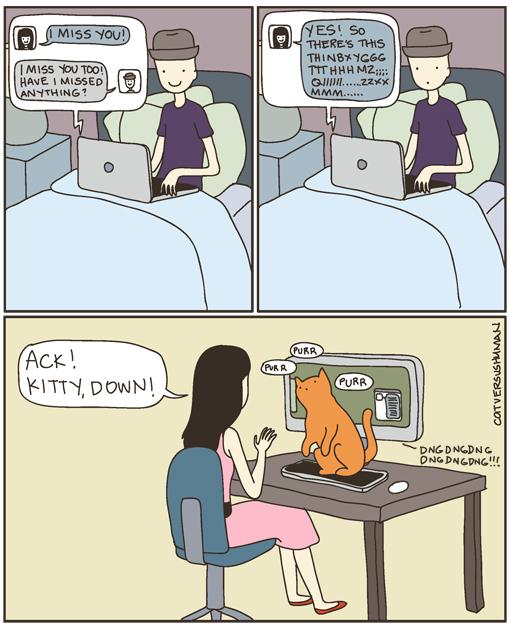 cat vs. human il mio posto preferito