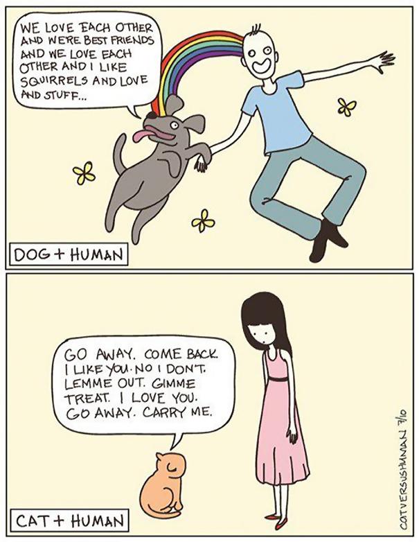 cat vs. human cat logic funny