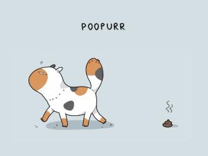 poopurr